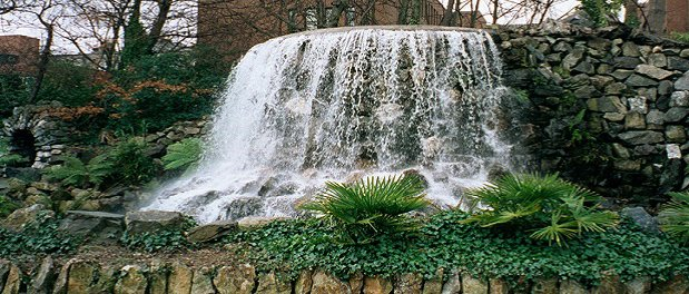 iveagh gardens with fountain
