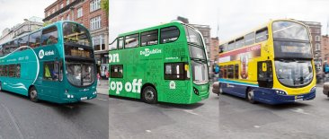 Airlink, Hop-on hop-off and public bus