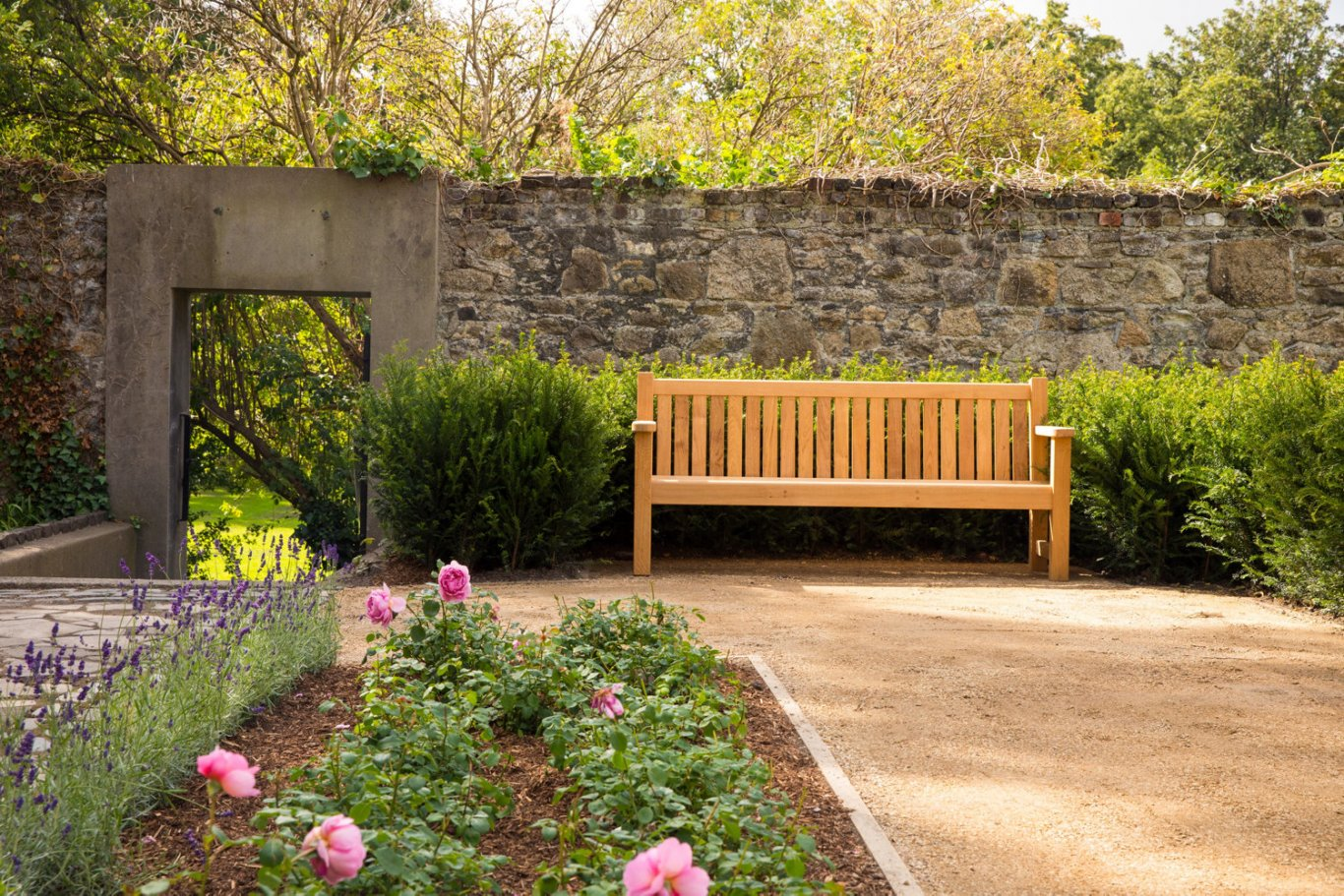 garden with bench in moli beside iveagh gardens